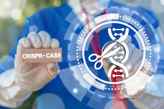 Chỉnh sửa gen CRISPR / Cas9, minh họa khái niệm (ảnh Internet).